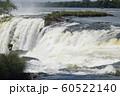 イグアスの滝  60522140