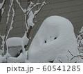雪ダルマ妖怪 60541285