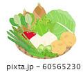 春野菜セット 60565230