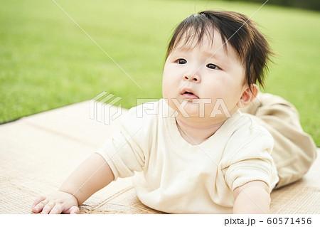 赤ちゃん 60571456