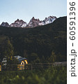 Mountain peaks in Chamonix-Mont-Blanc. France. French alps, beautiful trees. National park. 60591396
