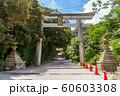 石清水八幡宮 京都 60603308