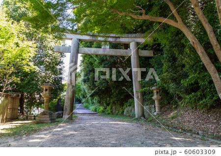 石清水八幡宮 京都 60603309