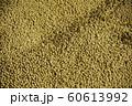 収穫された大豆 60613992