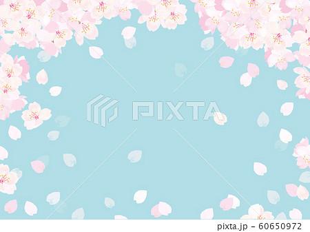 桜 背景イラスト 60650972