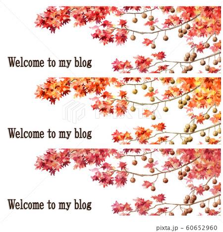 ブログ用ヘッダ画像モミジバフウ紅葉セット 60652960