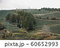 山間の茶畑 60652993