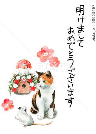 水彩で描いた三毛猫とねずみと鏡餅のイラストの年賀状 60653467