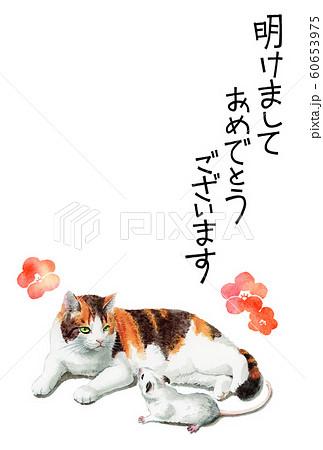 水彩で描いた三毛猫とねずみのイラストの年賀状 60653975