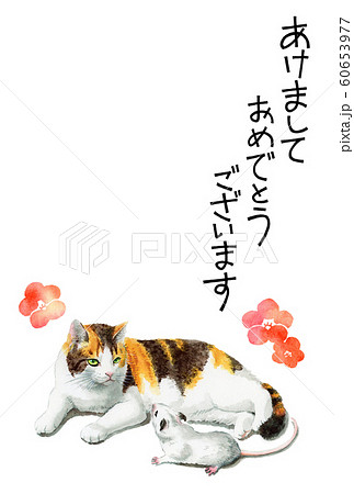 水彩で描いた三毛猫とねずみのイラストの年賀状 60653977