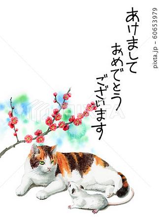 水彩で描いた三毛猫とねずみのイラストの年賀状 60653979