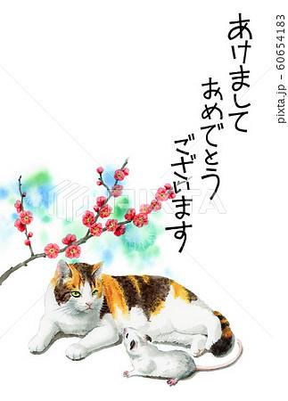 水彩で描いた三毛猫とねずみのイラストの年賀状 60654183