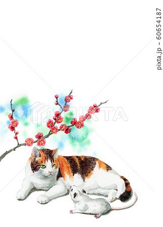 水彩で描いた三毛猫とねずみのイラストの年賀状 60654187