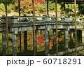 仙洞御所庭園 60718291