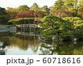 仙洞御所 庭園 60718616