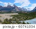 アルゼンチン パタゴニア ロス・グラシアレス国立公園 60741034