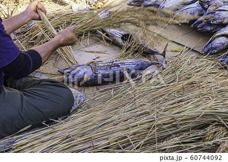 (静岡県)西伊豆伝統の潮鰹(鰹の正月飾り)作り 60744092