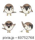 いろいろな表情のスズメ(考える、足踏み、喜び、排泄) 60752768