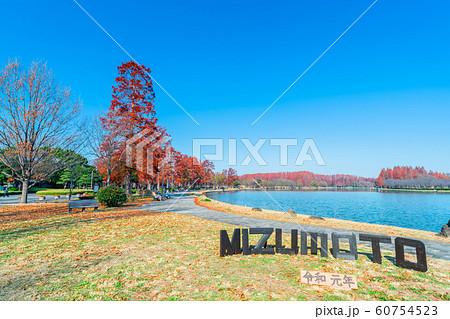 東京 水元公園の紅葉 60754523