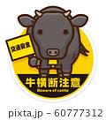 牛横断注意 黒毛和牛 60777312