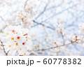 桜、春の雰囲気 60778382