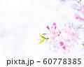 桜、春の雰囲気 60778385