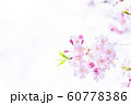 桜、春の雰囲気 60778386