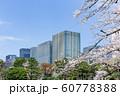 オフィスビルと桜 60778388