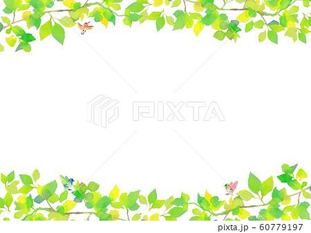 新緑 水彩 イラスト 背景 60779197