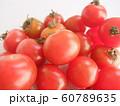 ミニトマト 60789635