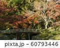 仙洞御所 庭風景 60793446