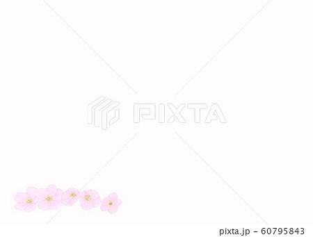花・桜・五輪・クローズアップ・余白大・下・左配置 60795843