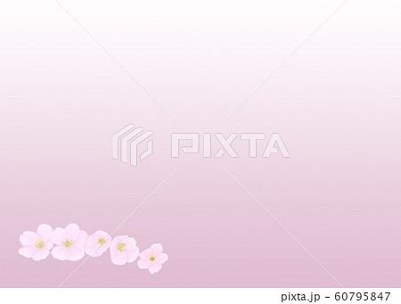 花・桜・五輪・クローズアップ・余白大・下・左配置 60795847
