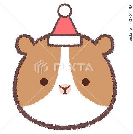 アイコンクリスマス帽子モルモット 60801692