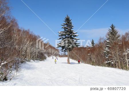 札幌国際スキー場のメルヘンコース 60807720