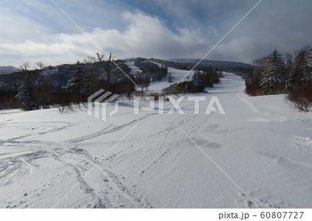 札幌国際スキー場のウッディーコース(下から) 60807727