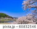 斐伊川堤桜並木 沈下橋(潜水橋) 60832546