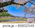 斐伊川堤桜並木 60832549