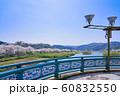 木次大橋から見た桜並木 60832550