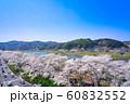 斐伊川堤桜並木 眺望 60832552