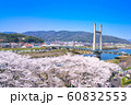 斐伊川堤桜並木 眺望 60832553