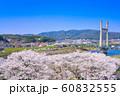 斐伊川堤桜並木 眺望 60832555