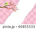 梅とうぐいす 60855533