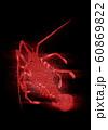 浮世絵 エビ その4 ホログラム 60869822