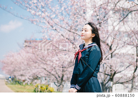 高校生 桜 60888150