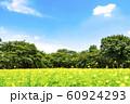 緑と青空と花畑の広がる風景 60924293