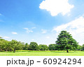 緑と青空の広がる風景 60924294