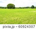 緑と青空の広がる風景 60924307