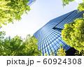 緑の多いオフィス街の風景 60924308