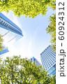 緑のあるオフィス街の風景 60924312